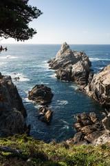 Point Lobos,California