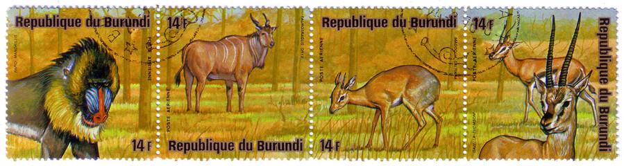 """BURUNDI - CIRCA 1976: A stamp printed by Burundi shows a series of images """"Animal Africa"""", circa 1976"""