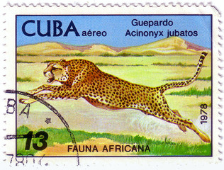 "BURUNDI - CIRCA 1976: A stamp printed by Burundi shows a series of images ""Animal Africa"", circa 1976"