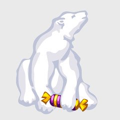 White bear with candy, vector illustration