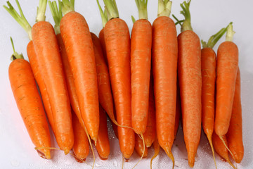 carrots bunch on white background