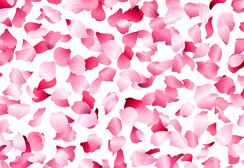 Vector bright petals fall down.