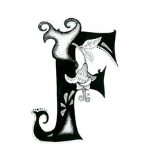 the letters alphabet  calligraphy hand drawn with flowers element isolated on the white background