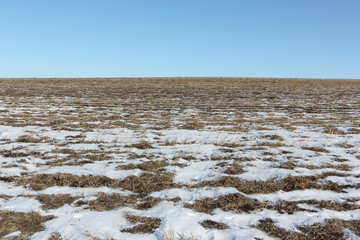 The plowed field in snow in the early spring