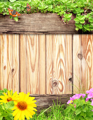 Wall Mural - Summer background with wooden plank, butterfly, grass and green