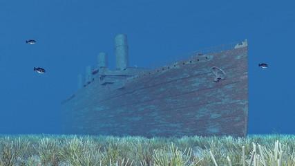 Schiffswrack Unterwasser mit Fischen und Seeanemonen