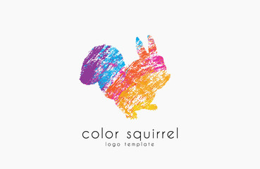 Squirrel logo. Color squirrel logo. Sweetl logo. Creative animal logo.