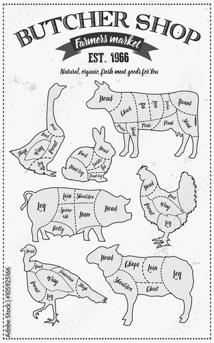 500_F_105925166_MSJAqXm1CygTNVpsW6xbg7ZEE3zyYD3l cutting meat diagram guide cut scheme in vintage style chalk