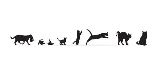 Frise-chats