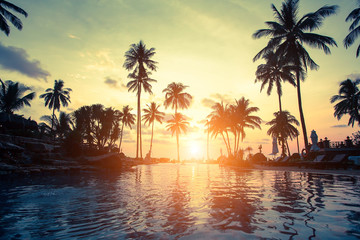 Golden sunset on the sea coast with palm trees reflection in the water.