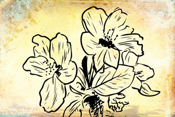 Vintage background with art illustration flower
