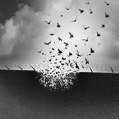 Break Down Walls