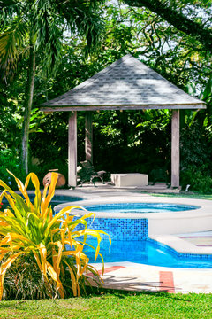 Outdoors relaxing swimming pool with gazebo and tropical garden