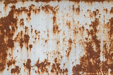 rust metal plate texture Wall mural