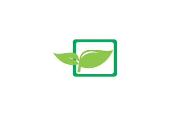 Green leaf  shape plant in the square frame logo