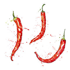 vector watercolor red chili peppers