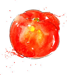 Printed roller blinds Splashing water vector watercolor red tomato