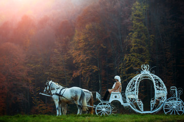 Vintage carriage in forest