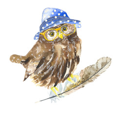 Owl hipster. Watercolor painting. The bird in the hat, and glasses. Hipster owl. Design t-shirt printing, logos, wrapping paper.