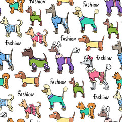 Vector seamless pattern with hand drawn colored dogs