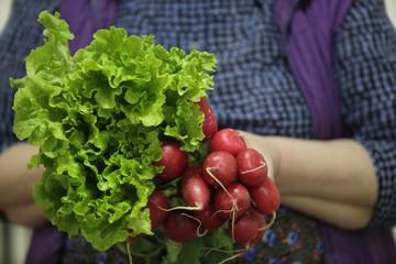 women farmer holding lettuce and red radish