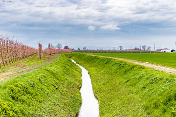 irrigation channel that passes through the cultivated fields