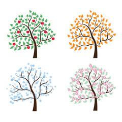 set of trees Four seasons