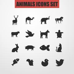 Animals iicon set