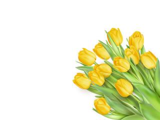 Tulip. Pinktulips. EPS 10