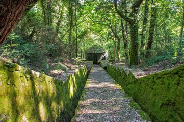 Acquedotto leopoldino di Colognole (Collesalvetti Livorno)