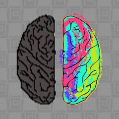Differences between the hemispheres of the brain.