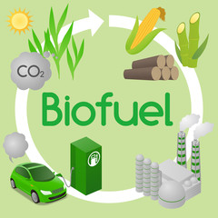 Biofuel life cycle, Biomass ethanol from corn, sugarcane, wood, diagram illustration