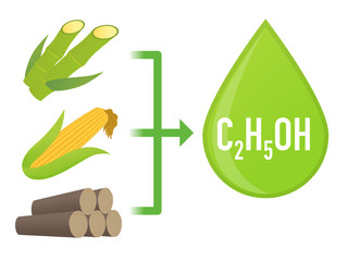 Biofuel: Biomass ethanol, made form Sugar, Starch, Cellulose,  diagram illustration