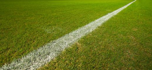 Line on green grass football field