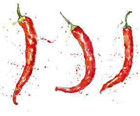 watercolor red chili peppers