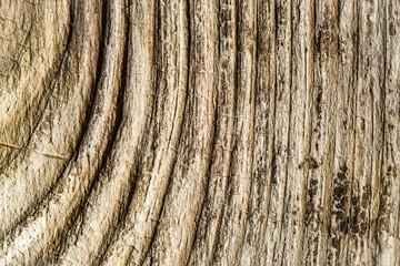 Relief wooden background