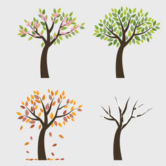 Tree 4 seasons (Spring, fall, winter and autumn)
