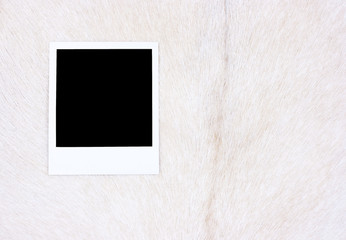 White goat skin and photo frame