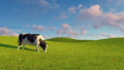 Wall Mural - Single mottled dairy cow graze on a green pasture under blue cloudy sky at spring day. Realistic 3D illustration.