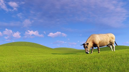 Wall Mural - Single red dairy cow graze on a green pasture under blue cloudy sky at evening time. Realistic 3D illustration.