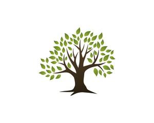 Tree Green Leaf Logo