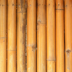 abstract bamboo fence