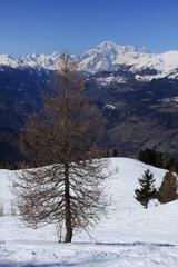 Pointe de la Pierre - Valle d'Aosta
