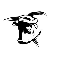 Vector Bull Head