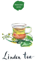 Cup of healthy linden tea and flowers