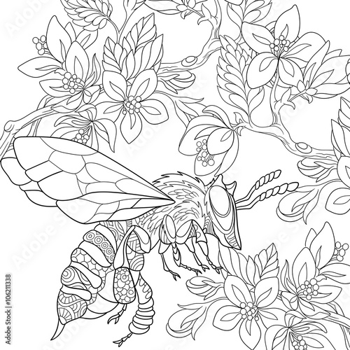 Zentangle Stylized Cartoon Bee Flying Among Sakura Flowers Sketch For Adult Antistress Coloring Page