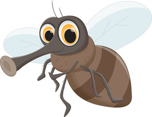 cute Fly cartoon