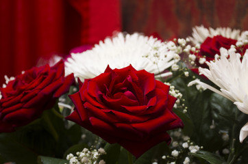 Beautiful gift bouquet of red roses and white chrysanthemums