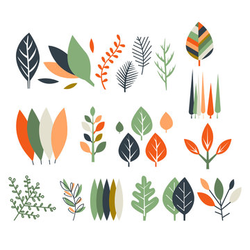 Leaves Collection Modern Design