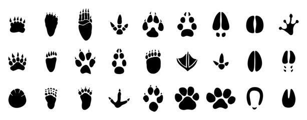 27 verschiedene Tierspuren,Pfoten